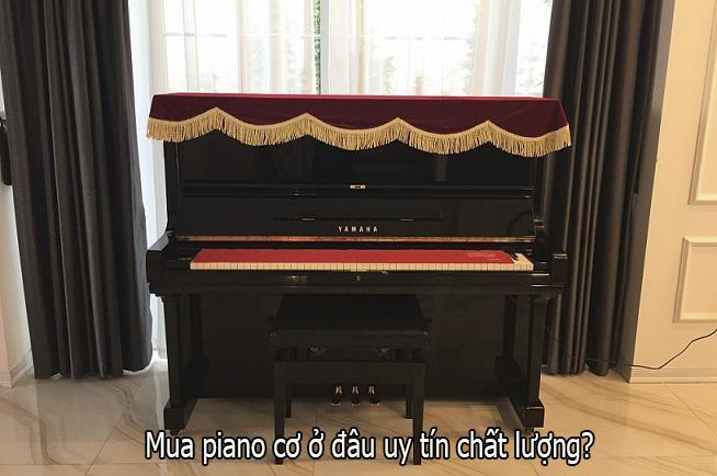 Mua piano cơ ở đâu uy tín chất lượng?