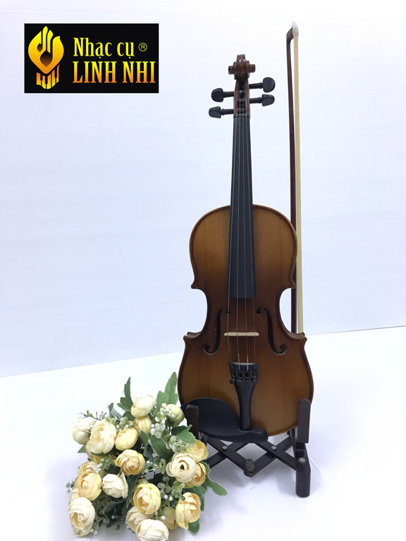 Mua violin tốt giá rẻ tại hà nội