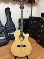 Guitar acoustic G201 giá rẻ