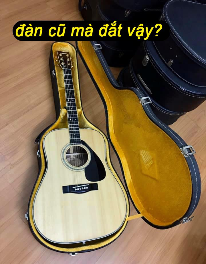 dan-cu-ma-dat-guitar-nhat-bai