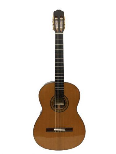 guitar classic takamine No.5 giá rẻ