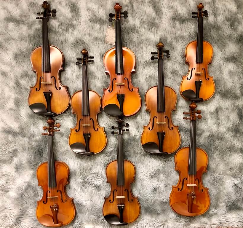 Cho thuê nhạc cụ đàn violin tại hà nội và các tỉnh
