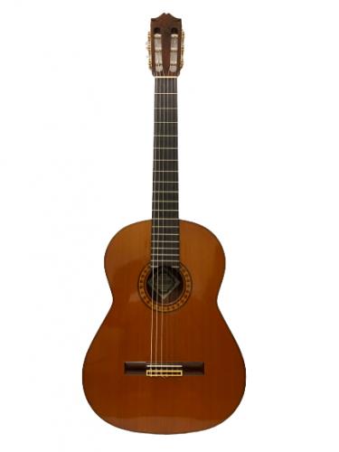 Guitar Classic Fernandes GC40