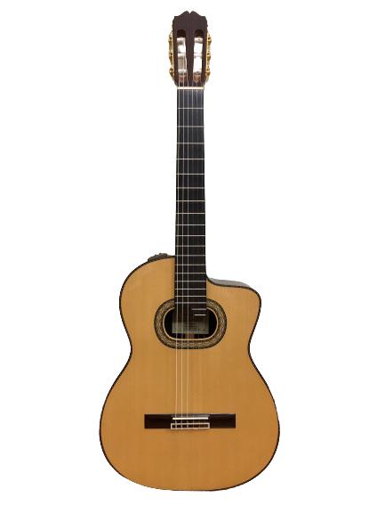 Guitar Classic Takamine PTG 018 giá rẻ