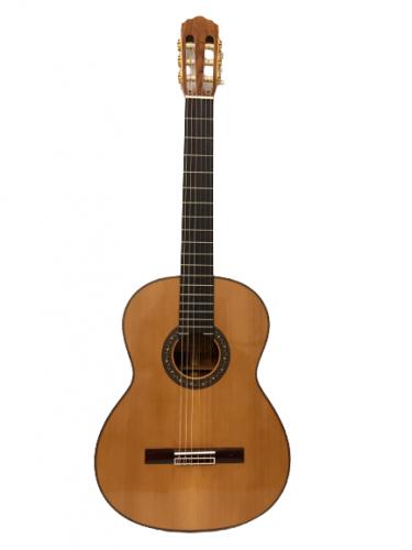 Guitar Classic Morris MC 50 giá rẻ