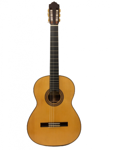 Guitar Classic Nakade Master 30
