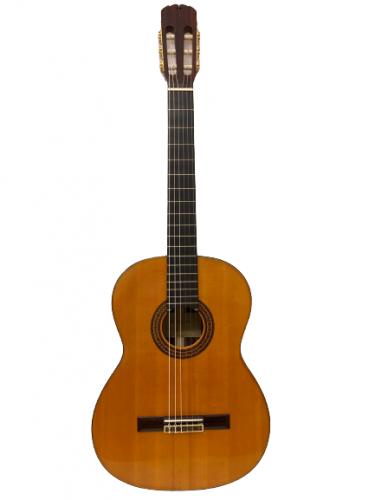 Guitar Classic Suzuki C300