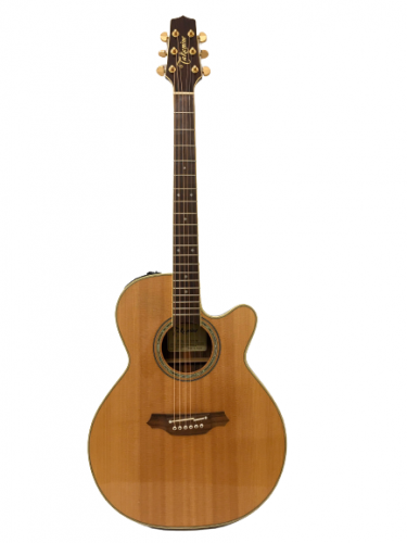 Guitar Acoustic Takamine 500SeriesCustom giá rẻ