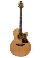 Guitar Acoustic Takamine DMP50S