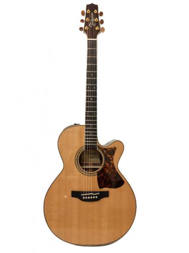 Guitar Acoustic Takamine DMP50S giá rẻ