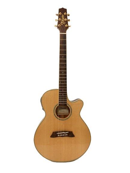 Guitar Acoustic Takamine TSP138C N giá rẻ