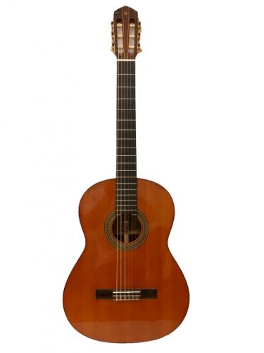 Guitar Classic Yamaha G250