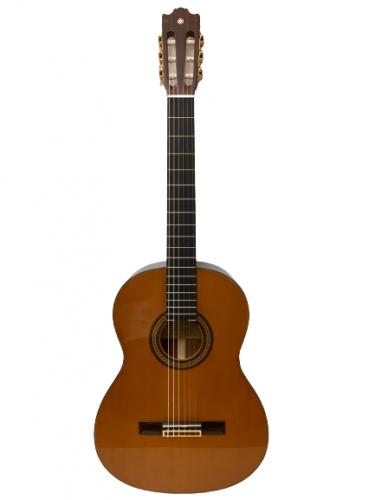 Guitar classic Yamaha C200