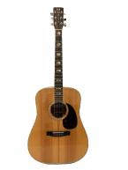 Guitar Acoustic Morris W80 Special giá rẻ