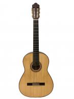 Guitar Classic Yukinobu Chai NP10H giá rẻ