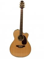 Guitar Acoustic Takamine DMP761C-N gía rẻ