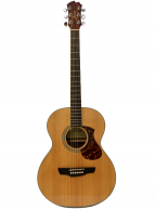 Guitar Acoustic James J-500ANAT giá rẻ