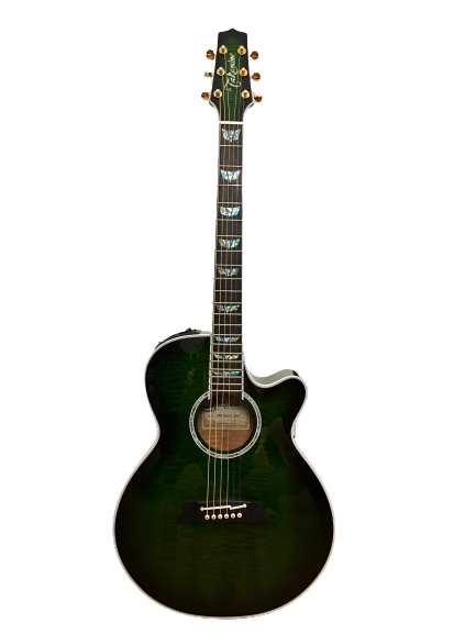 Guitar Acoustic Takamine TDP181AC SGS giá rẻ