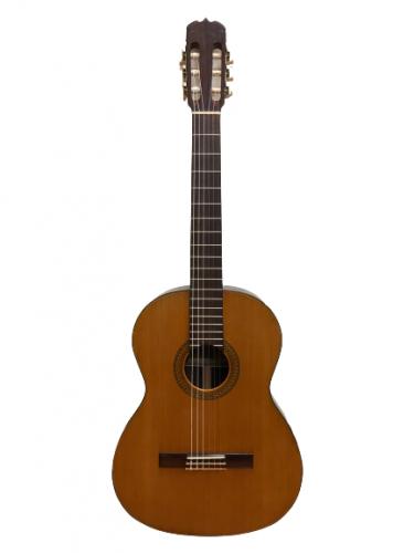 Guitar Classic Matsuoka No20 giá rẻ