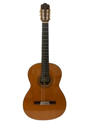 guitar classic asturias no. standard giá rẻ