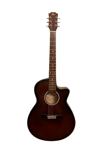 Guitar Acoustic Duy Ngọc A202