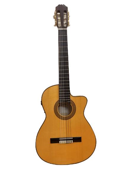 Guitar Classic Aria ACE77FCE giá rẻ