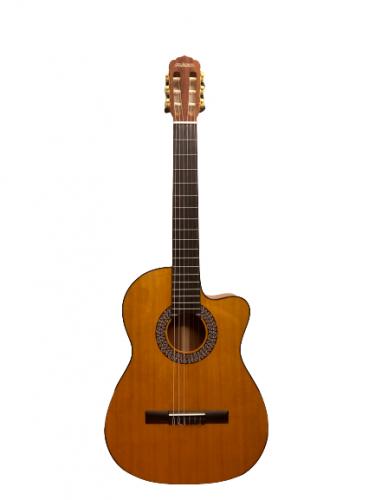 Guitar Classic Flamenco giá rẻ