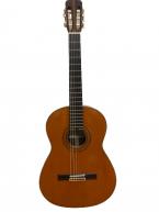 Guitar Classic kodaira AST60 giá rẻ