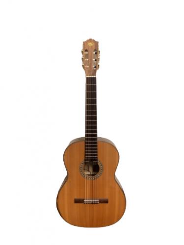 Guitar classic SC802 giá rẻ