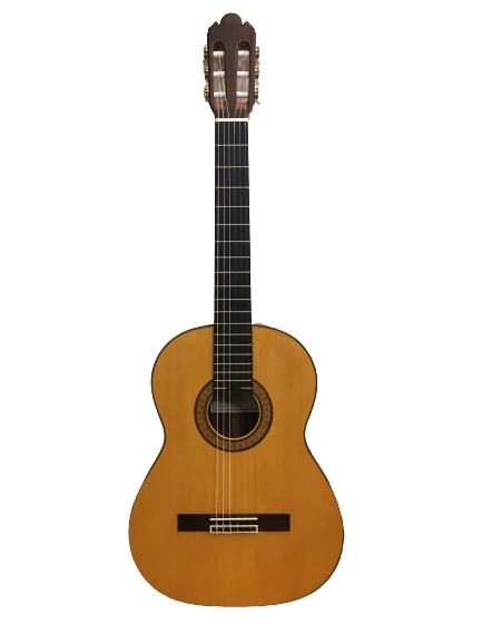 Guitar Classic Antonio Sanchez 1025 giá tốt