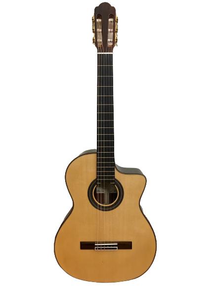 Guitar Classic Aria A-85CWE giá tốt