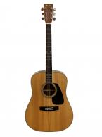 Guitar Acoustic Morris MD 510 giá tốt