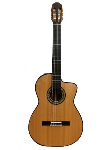 Guitar Classic Takamine DMP370NC N giá rẻ