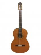 Guitar Classic Takamine PT 307 giá tốt