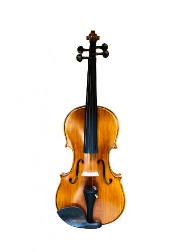 Viloin Pinshang V330