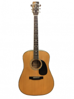 Guitar Acoustic W60 Special giá tốt