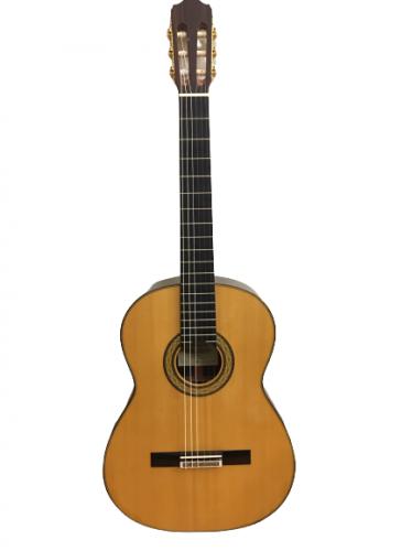 Guitar Classic Takamine No10 giá tốt