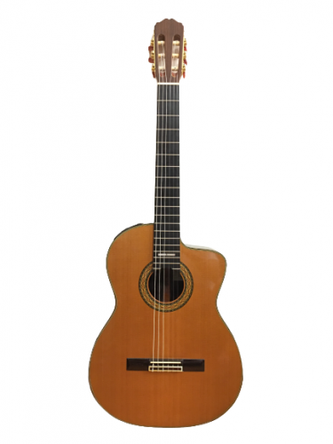 Guitar Classic Takamine PT 310