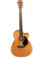 Guitar Acoustic Martin GPCPA4 giá tốt