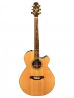 Guitar Acoustic Takamine PTU510 N
